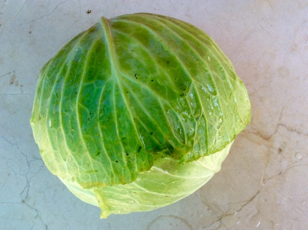 Cabbage, each