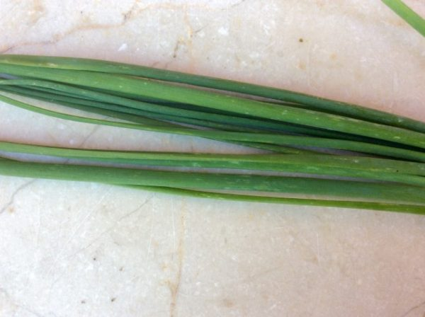 Onion Chives per bunch