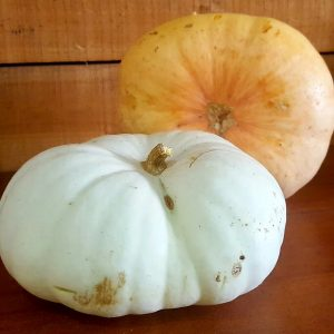 Pumpkin Slices per Kg