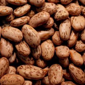 Organic Borlotti Beans, 250g