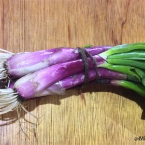 Red Spring Onions, per bunch